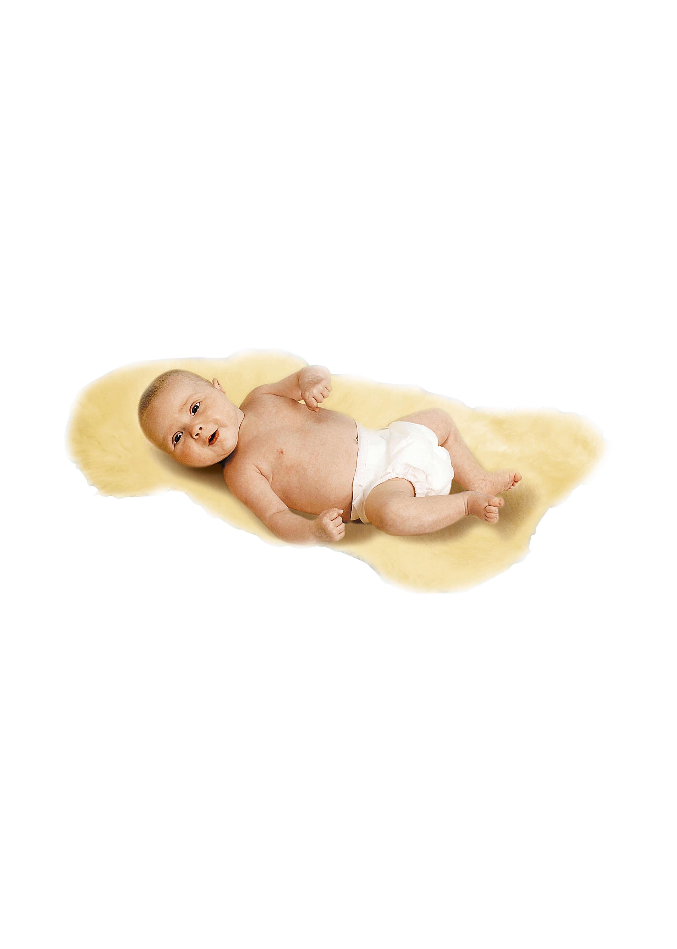 Baby-Lammfell geschoren L2163 1